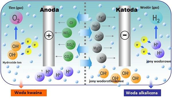 elektroliza wody jonizator