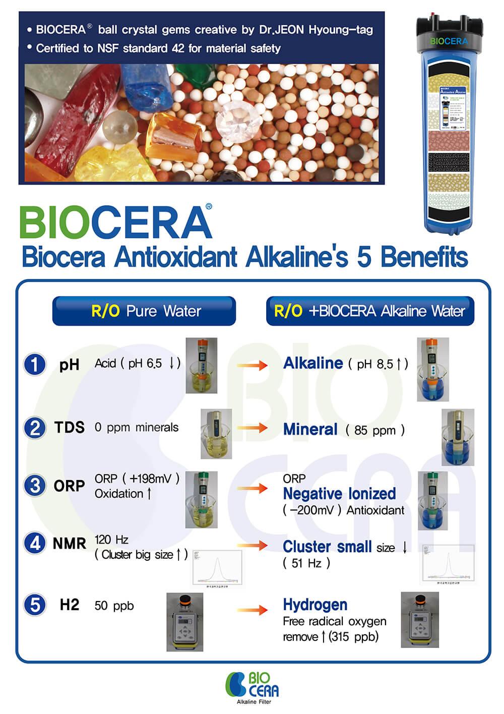 Biocera wkład alkalizujący jonizujący wodę